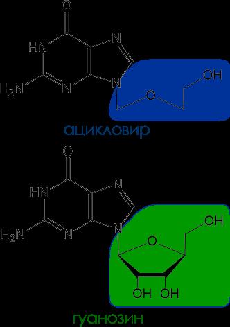 ацикловир и гуанозин