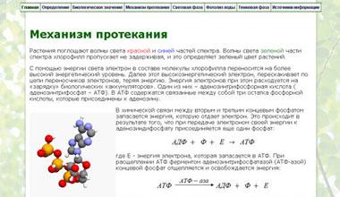 фотосинтез, презентация фотосинтез