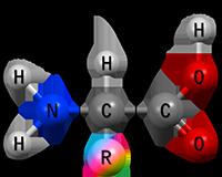 строение белков, первичная структура, вторичная структура, аминокислота