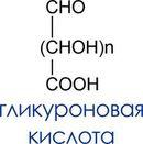 гликуроновая кислота